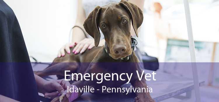 Emergency Vet Idaville - Pennsylvania