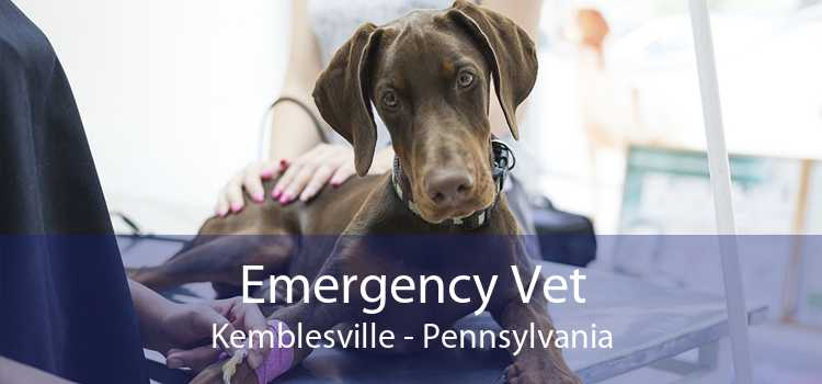 Emergency Vet Kemblesville - Pennsylvania