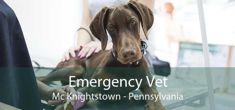 Emergency Vet Mc Knightstown - Pennsylvania