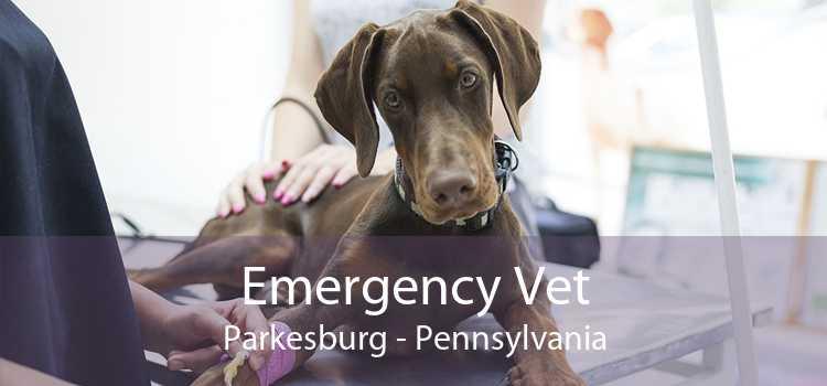 Emergency Vet Parkesburg - Pennsylvania