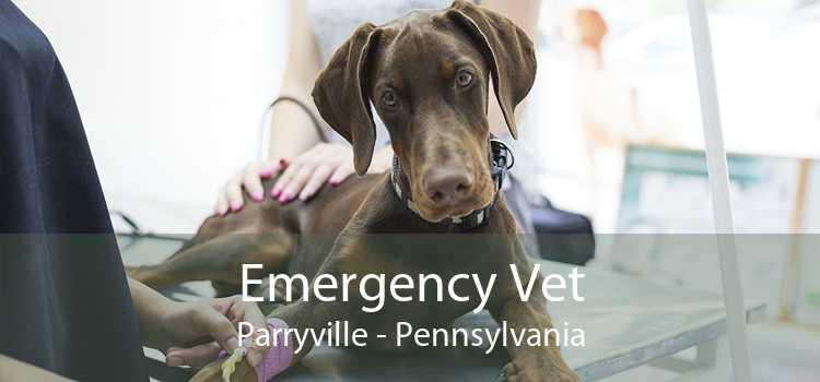 Emergency Vet Parryville - Pennsylvania
