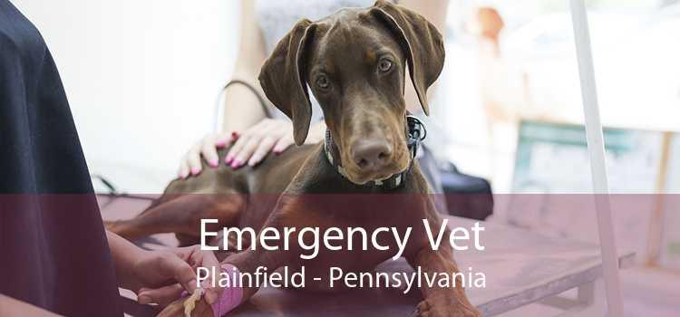 Emergency Vet Plainfield - Pennsylvania