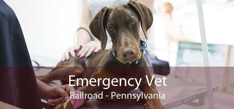 Emergency Vet Railroad - Pennsylvania