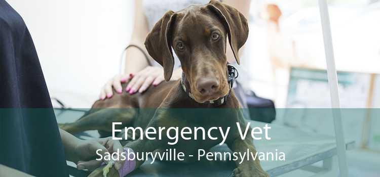 Emergency Vet Sadsburyville - Pennsylvania