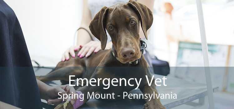 Emergency Vet Spring Mount - Pennsylvania