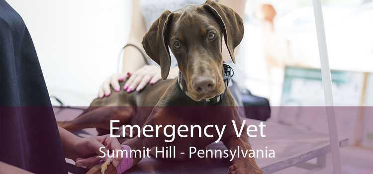 Emergency Vet Summit Hill - Pennsylvania