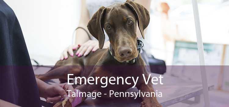 Emergency Vet Talmage - Pennsylvania