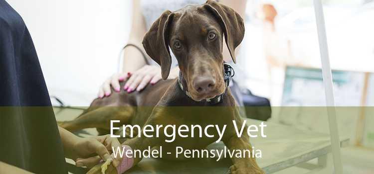 Emergency Vet Wendel - Pennsylvania