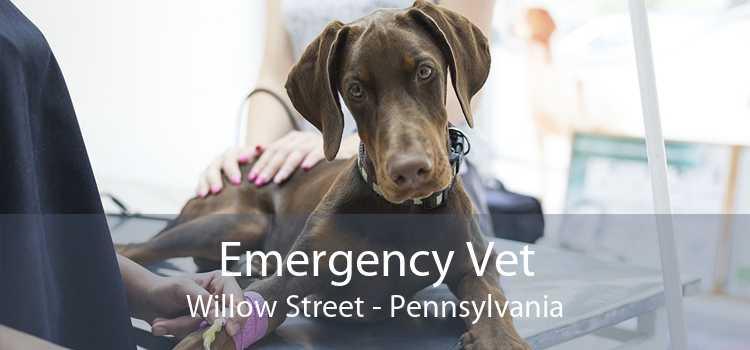Emergency Vet Willow Street - Pennsylvania