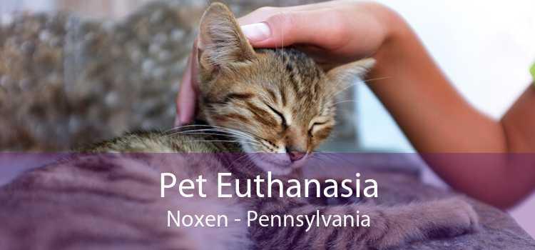 Pet Euthanasia Noxen - Pennsylvania