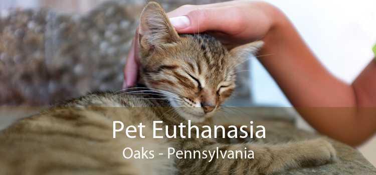 Pet Euthanasia Oaks - Pennsylvania