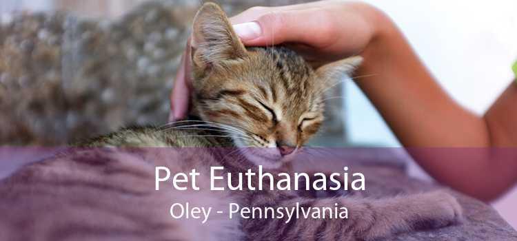 Pet Euthanasia Oley - Pennsylvania
