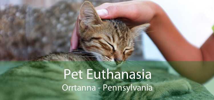 Pet Euthanasia Orrtanna - Pennsylvania