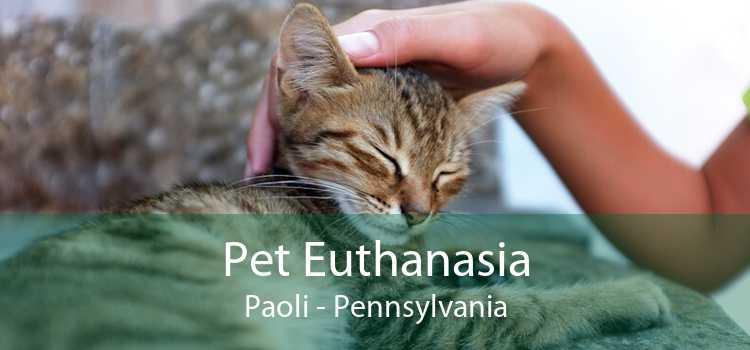 Pet Euthanasia Paoli - Pennsylvania