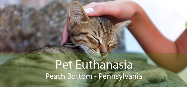 Pet Euthanasia Peach Bottom - Pennsylvania