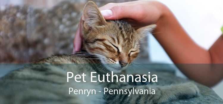 Pet Euthanasia Penryn - Pennsylvania
