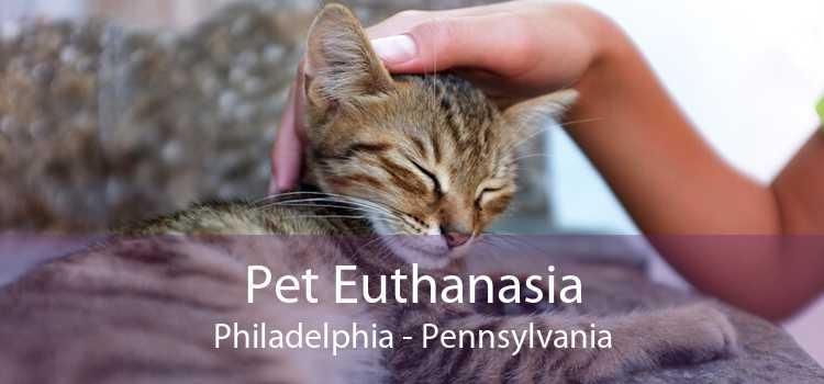 Pet Euthanasia Philadelphia - Pennsylvania