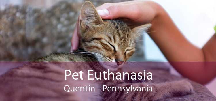 Pet Euthanasia Quentin - Pennsylvania