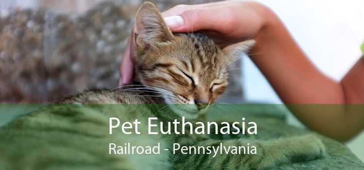 Pet Euthanasia Railroad - Pennsylvania