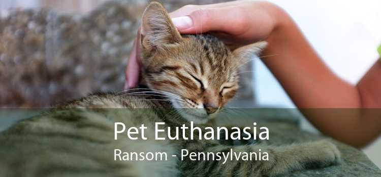 Pet Euthanasia Ransom - Pennsylvania
