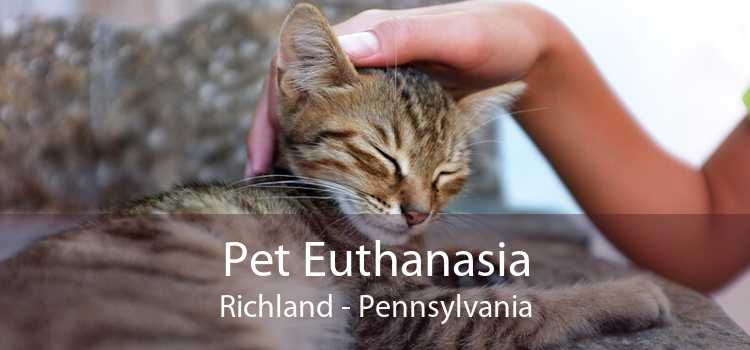 Pet Euthanasia Richland - Pennsylvania