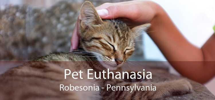Pet Euthanasia Robesonia - Pennsylvania