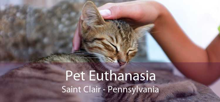 Pet Euthanasia Saint Clair - Pennsylvania