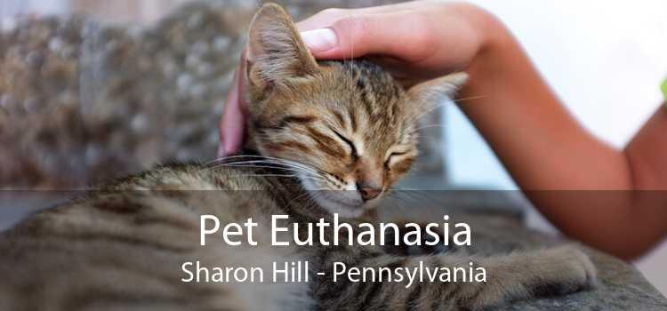 Pet Euthanasia Sharon Hill - Pennsylvania