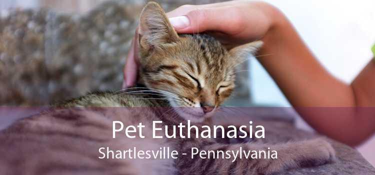 Pet Euthanasia Shartlesville - Pennsylvania