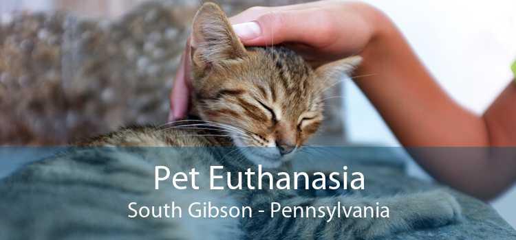 Pet Euthanasia South Gibson - Pennsylvania
