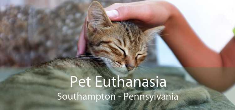 Pet Euthanasia Southampton - Pennsylvania