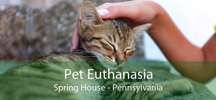 Pet Euthanasia Spring House - Pennsylvania