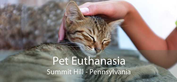 Pet Euthanasia Summit Hill - Pennsylvania
