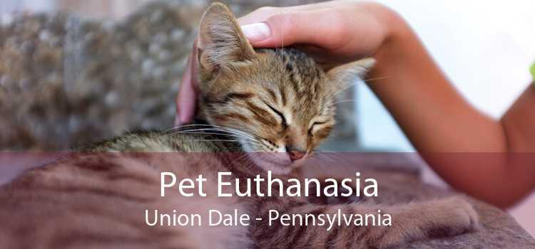 Pet Euthanasia Union Dale - Pennsylvania
