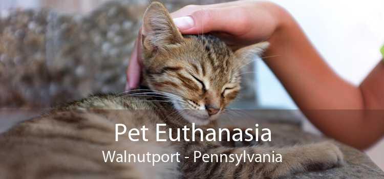 Pet Euthanasia Walnutport - Pennsylvania