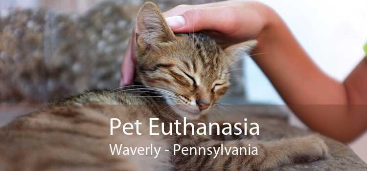Pet Euthanasia Waverly - Pennsylvania