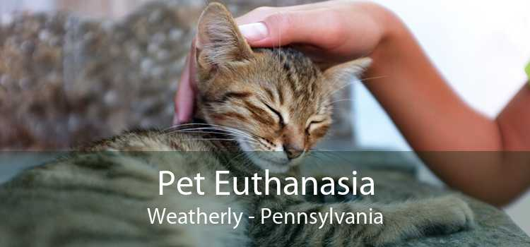 Pet Euthanasia Weatherly - Pennsylvania