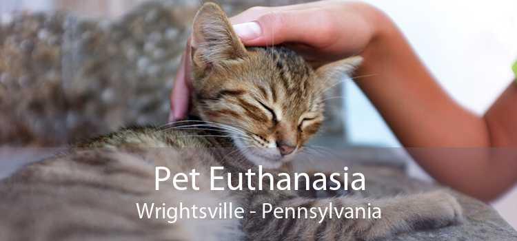 Pet Euthanasia Wrightsville - Pennsylvania
