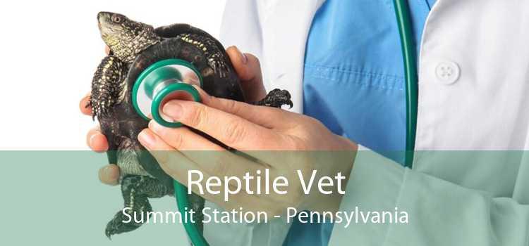Reptile Vet Summit Station - Pennsylvania