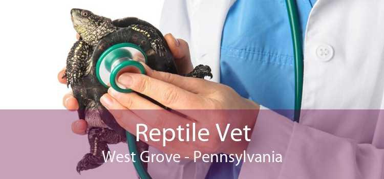 Reptile Vet West Grove - Pennsylvania