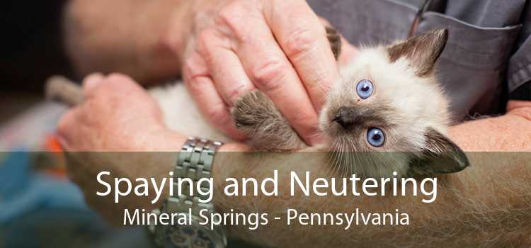Spaying and Neutering Mineral Springs - Pennsylvania