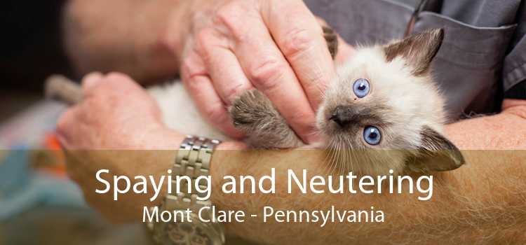 Spaying and Neutering Mont Clare - Pennsylvania