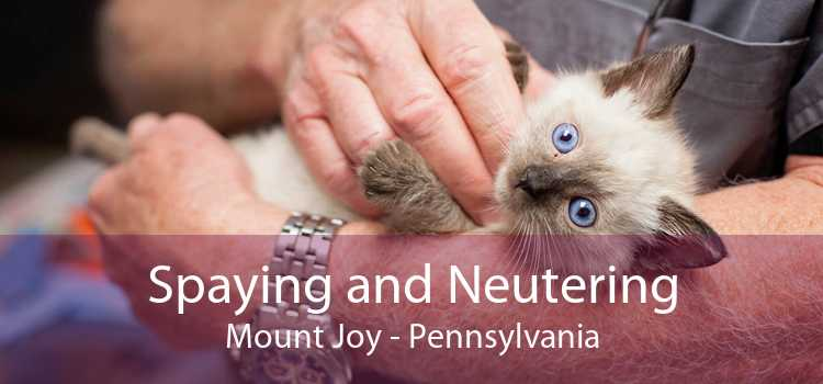 Spaying and Neutering Mount Joy - Pennsylvania