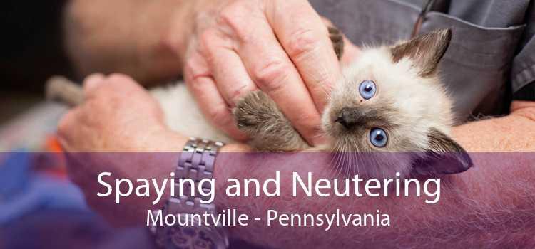 Spaying and Neutering Mountville - Pennsylvania