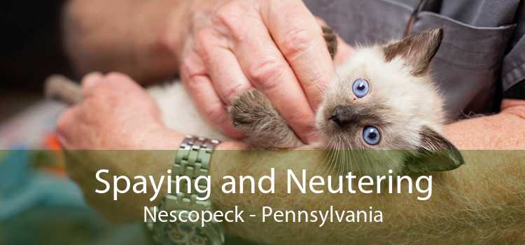 Spaying and Neutering Nescopeck - Pennsylvania