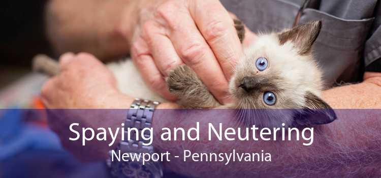 Spaying and Neutering Newport - Pennsylvania