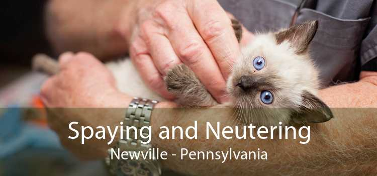 Spaying and Neutering Newville - Pennsylvania