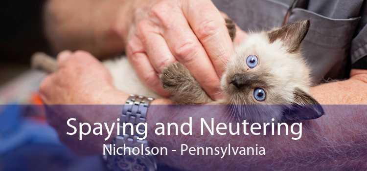 Spaying and Neutering Nicholson - Pennsylvania