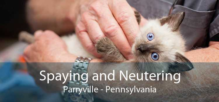Spaying and Neutering Parryville - Pennsylvania