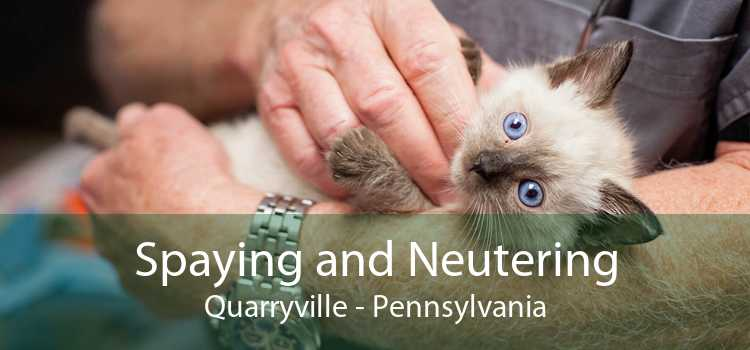 Spaying and Neutering Quarryville - Pennsylvania